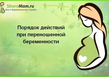 Порядок действий при переношенной беременности