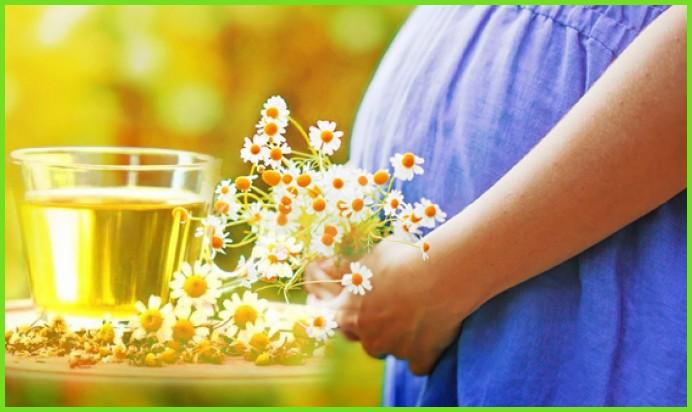 Беременная пьет чай с ромашкой